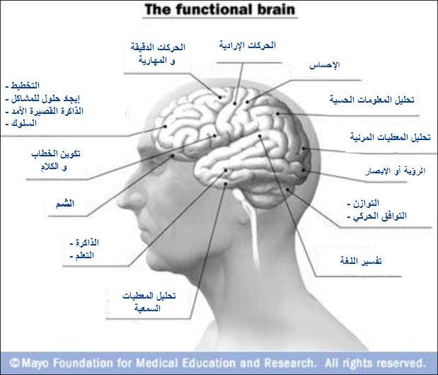 ������� functions1.jpg