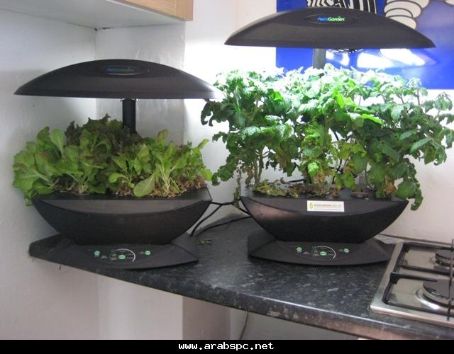 تطور في الزراعه بامكانك ان تزرع داخل البيت 60597ae26b