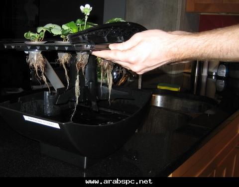 تطور في الزراعه بامكانك ان تزرع داخل البيت 8589509ff1