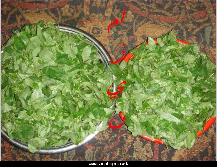حفظ الخضروات و الفاكهة (ملف كامل و بالصور) 976bb0cacb