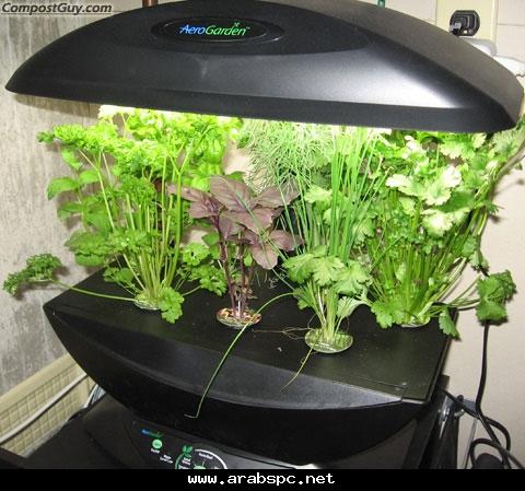 تطور في الزراعه بامكانك ان تزرع داخل البيت C03ad77eec